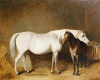 horse and foal in a stable by james (of bath) loder