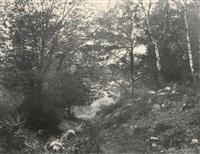 au bas du point de vue du champ, forêt de fontainebleau by eugène cuvelier
