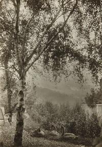 rodin's garden by gertrude kasebier