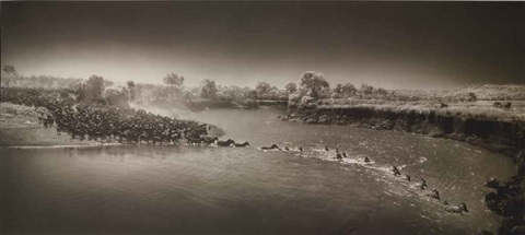 zebras crossing river maasai mara by nick brandt