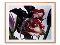 flowers and jamorinsky by nobuyoshi araki