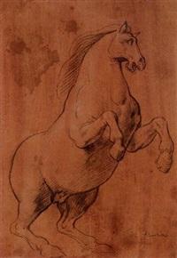 un cheval cabré, tourné vers la droite by lazzaro tavarone