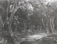 bosque de ombúes (rocha) by carlos aliseris