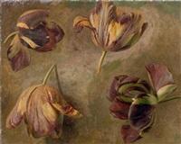 etude de tulipes (study) by cornelis van spaendonck