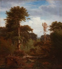 forest scene with tall trees by peter (johann p.) raadsig