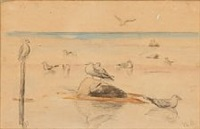 coastal scape with seagulls by michael peter ancher