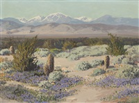 wildflowers, palm springs ca by carl sammons