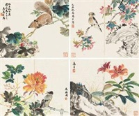 花卉 (album of 8) by ma wanli