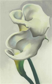 two calla lilies together by georgia o'keeffe