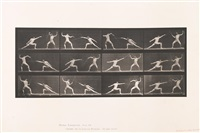 plates 349, 593 and 331 (from animal locomotion; 3 works) by eadweard muybridge