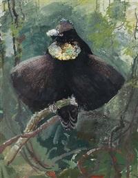 exotischer vogel by ottmar f. von fuehrer