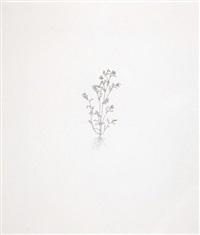nourishment (portfolio of 12 w/ justif.) by michael landy