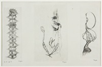 na poli (3 works) by toyen (maria cerminova)