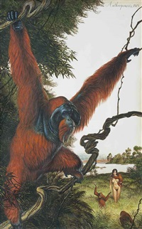 anthroponosis - 1975 by walton ford