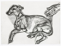 pluto aged twelve by lucian freud