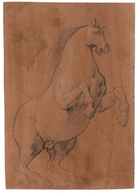 study of a rearing horse by lazzaro tavarone