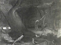 numerous species on pheasant in a landscape by james (sillet) sillett