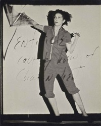 the dreamer within the dream by carolee schneemann