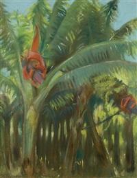 bananowce by casimir stabrovsky