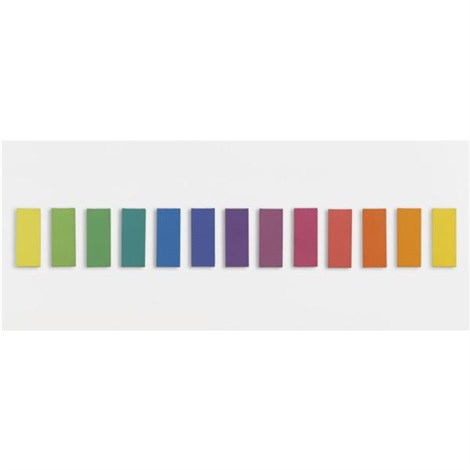 spectrum vi in 13 parts by ellsworth kelly