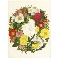 a collection of roses from nature (bk w/ 90 works and frontispiece; folio) by mary lawrance