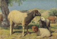 sheep on mount zion by william j. (webbe) webb
