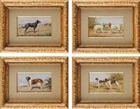 chien st. bernard, chien berger de beauce, couple de braques d'auvergne et couple d'épagneuls bretons (set of 4) by léon barillot