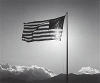 flag by robert mapplethorpe