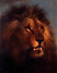 a lion's head by edward robert smythe