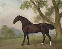 a dark bay hunter beside a tree in an extensive landscape by george stubbs