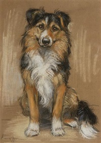 a collie by marion rodger hamilton harvey