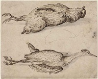 a partridge and a squacco heron by jacques de gheyn ii