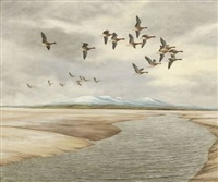 ducks in flight by geoffrey campbell-black
