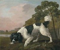 a black and white spaniel following a scent, in a landscape with a lake and a country house beyond by george stubbs