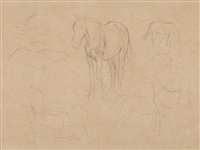 pencil drawing, horse studies by edgar degas