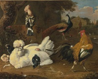 a tufted hen, a rooster, a hoopoe, a peacock, and other exotic birds in a park by melchior de hondecoeter