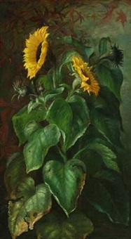 sunflowers by alfrida baadsgaard