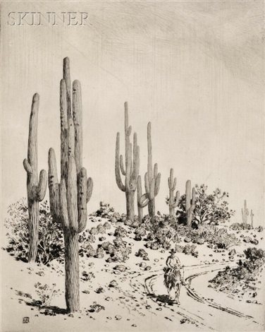 road to apache reservation - arizona by george elbert burr