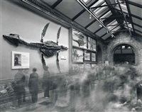 fossils, natural history museum by matthew pillsbury