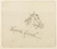 szkic głowy konia by woiciech (aldabert) ritter von kossak