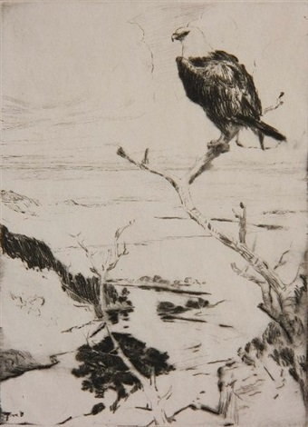 bald eagle by frank weston benson