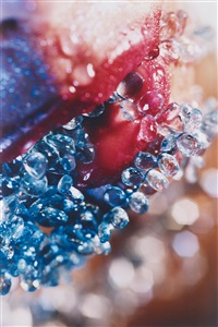 bluer tears by marilyn minter