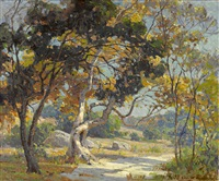 sunshine through the oaks by jack wilkinson smith