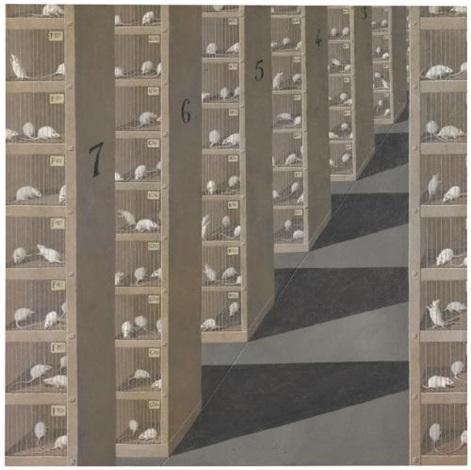 souris blanches dans leurs cages by domenico gnoli