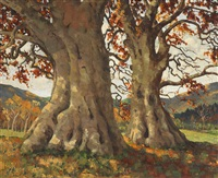 ancient trees, powerscourt, county wicklow by mabel young