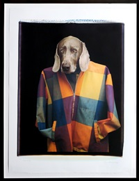 male model by william wegman
