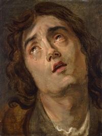 kopfstudie eines jungen mannes by sir anthony van dyck