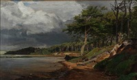 coastal scape at a fjord by janus andreas barthotin la cour