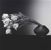parrot tulips by robert mapplethorpe
