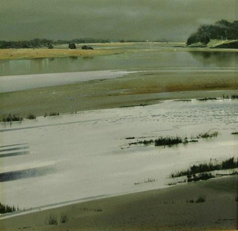 swallow ground by ken johnson